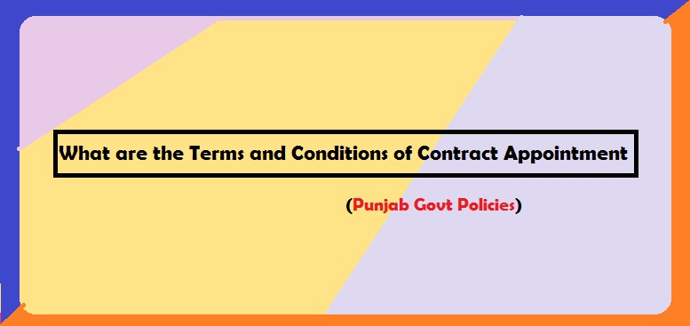 What are the Terms and Conditions of Contract Appointment