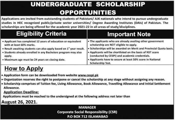 Undergraduate Scholarship 2021 For Pakistani/AJK Students